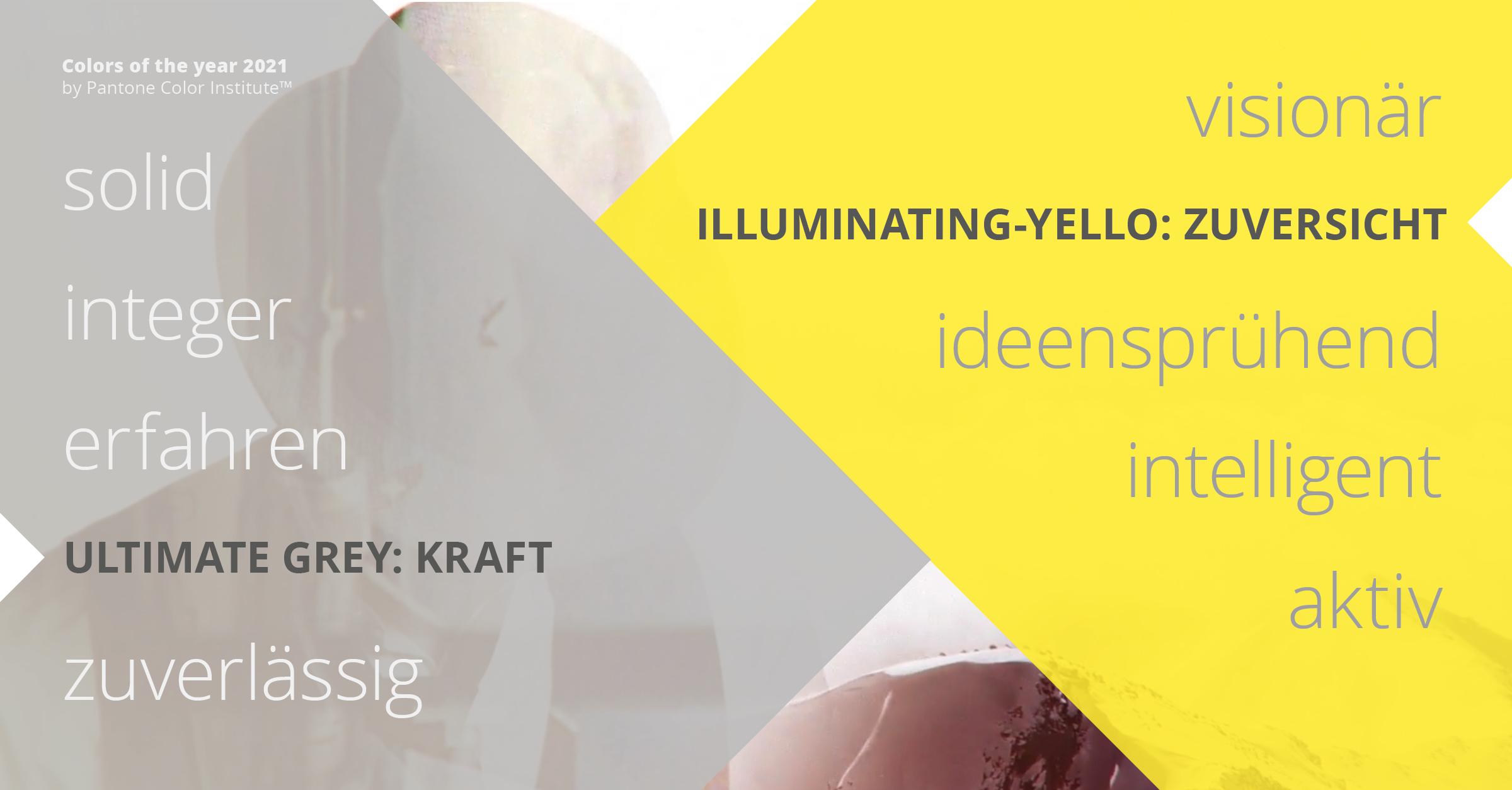 Schweizer-Shareholder-Solutions-Partner-Nimbus-visionär-und-bodenständig